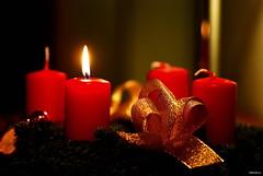 1. Advent (Silandi) Tags: november light red yellow gold golden advent candle adventwreath fir adventskranz 2015 adventseason renateeichert resilu