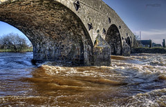 A lot of water under the bridge (pictureThis-d.i) Tags: bridge fishing outdoor picturethis moyolariver airfieldroad