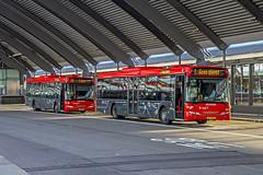 R-NET EBS Bussen 4034 en 4022 Amsterdam CS  2015 (RRFraRoRi) Tags: bus buses amsterdam transportation centraalstation autobus scania vervoer ebs rnet streekvervoer scaniaomnilink autobussen eggedbusservice vervoertramstramtramwaypublic ebs4022 ebs4034