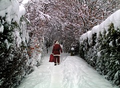 snow 2010 christmas santa hackenthorpe (Simon Dell Photography) Tags: snow 2010 christmas santa hackenthorpe great fall winter photo clause saint nic composite old new s12 alley jennel tree tunnel coverd card poster wall paper image simon dell photography
