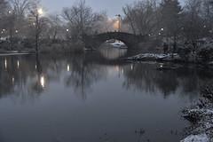 Winter- Central Park (geraldineh.dutilly) Tags: winter snow centralpark newyork reflection water lake fog