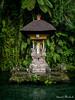 "Bali Gunung Kawi (Ineound) Tags: bali urlaub olympus micro four thirds mft m43 microfourthirds omd em5 μ43 olympus1250mmf3563 olympusm1250mmf3563 f3563 mzd1250 mzuikodigitaled1250mmf3563ez olympus1250mm 1250 1250mm makro macro ""spiegelblickde"" spiegelblickde spiegel blick landscape landschaft natur nature temple tempel jungle indonesia"