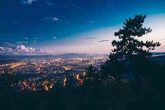 City light (Čeri) Tags: night city view f14 35mm sigma green feeling hourse winter people portrait landscape outdoor vscofilm vsco light free nature colour 6d canon slovakia slovensko kosice vans