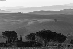 IMG_3868-1ri (kleiner nacktmull) Tags: apsc black blackandwhite bw canon camera dslr eos europa europe foto flickr grey grau haus house gebäude building landscape landschaft lens italy italia italien tuscany toscana toskana valley tal val valdorcia dorcia orcia pienza san sanquirico kleinernacktmull kolle kamera nacktmull nature natur objektiv photo quirico stephankolle stephan schwarzweiss schwarzweis sw schwarz weiss weis white bäume trees 60d 70300mm 2016