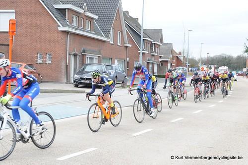 Nieuwelingen  (244)