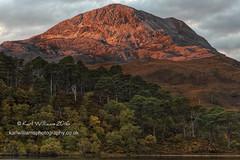 Clair Dawn (3) (Shuggie!!) Tags: autumn dawn forest hdr highlands hills landscape morninglight mountains pine scotland torridon trees westerross zenfolio karl williams karlwilliams