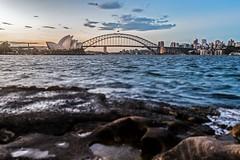 Sweet Sydney sunset (Rakuli) Tags: ifttt 500px sydney harbour twilight sunset water bridge city rocks clouds dusk golden tilt shift