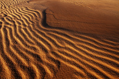 Sand at Sunset (south*swell) Tags: sand beach texture abstract treacherybeach australia ripple wave gold golden nature beauty light sealrocks wideangle 10mm 1022mm canon