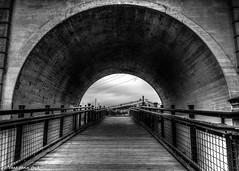 Going Through the Tunnel (that_damn_duck) Tags: blackandwhite monochrome arch tunnel walkingbridge bridge handrails architecture bw blackwhite