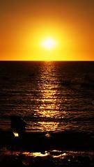 Feel the Warmth (hmerinomx) Tags: acapulco guerrero mexico sunset horizon horizonte ocean oceano sky cielo pacific pacifico boat lancha silhouette siluetasurface superficie sun sol orange naranja