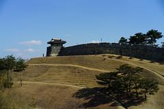 Castle 1 (Lusp JW Lee) Tags: castle carlzeissoptonsonnar50mmf15contaxrangefinder sonyilce7rm2 korea suwon sonya7r2