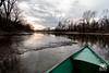 Giro in lanca (andrea.prave) Tags: bernate ticino parcodelticino valledelticino river fiume lanca lombardy lombardia nature natura naturaleza boat barca lancia ragondin