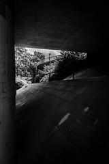 Drunter und Drber IV (sfp - sebastian fischer photography) Tags: bridge urban architecture architektur brcke mannheim brcken unterfhrung fahrradweg schlospark