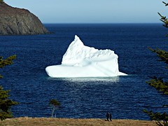 Sailing Into the Bay (Carl Neufelder) Tags: ocean people canada nature newfoundland trinity iceberg