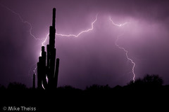 Monsoon_Lightning_033 (michellezeldenrust) Tags: red arizona usa storm hot rain desert flood july august dirt monsoon heat lightning dust sandstorms haboob