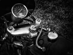 Detail oude racemotor (PortSite) Tags: blackandwhite bw white black holland classic netherlands monochrome nikon nederland naturallight oldtimer motor oldtimers zwart wit paysbas pesaro zw lumirenaturelle 2015 bajos  veglia portsite motobi toerenteller natuurlijklicht motorrace  borletti  d3s