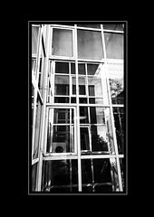 W10 (Alaric31620) Tags: windows architecture nokia 1020 fenetre