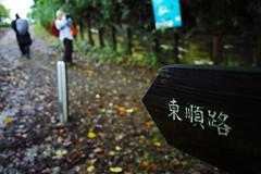 201510174in07 (foxfoto_archives) Tags: japan tokyo photo walk sigma snap hills tama pro   630 foveon quattro dp1 spp    karakida   dp1quattro dp1q spp6 sigbura spp630 spp63