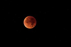 Blood moon Sept 2015 (waynedavey67) Tags: moon nature outside star eclipse space fullmoon galaxy planet lunar solarsystem lunareclipse bloodmoon
