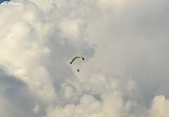 ParaGliding wordcup Southasia 2015 (HighlanderAkash) Tags: beer nikon billing paragliding fai beed handglider wordcup kangravalley himachaltourism d7000 hiamchalpradesh pwc2015 sirsports airportathorityofindia