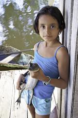 Rio Solimes, AM (Gabriel Castaldini) Tags: brazil rio brasil menina manaus norte amazonas jacar amaznia solimes palafita ribeirinho bichodeestimao riosolimes corajosa gabrielcastaldini