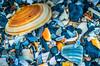 Clam shell with other shells in Folly Beach South Carolina (CarmenSisson) Tags: life usa shells detail macro beach closeup seashells marine pattern close shoreline southcarolina shell clam shore follybeach bivalve