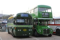 RF281 (MLL 818) - Newport (GreenHoover) Tags: newport isleofwight routemaster greenline iow rm londontransport rml rf281 mll818 rml2456 jjd456d iowbuscoachmuseum