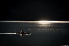Einsamer Paddler (testdummy76) Tags: autumn lake fall water see wasser herbst kajak kochel paddler ruderer