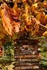 Richtung Herbst (Maximilian Kauß) Tags: fall canon germany deutschland eos gold hessen outdoor laub natur baum hals hohensolms ldk 2013 650d hohenahr lahndillkreis laubbäume