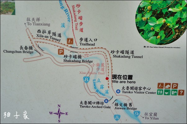 小錐麓步道20