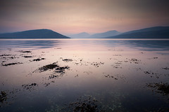 Loch Fyne (Stuart Stevenson) Tags: mist seaweed sunrise photography inveraray lochfyne clydevalley arrocharalps stuartstevenson scotlandlochscape saltwaterloch