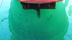 """""""καλογριες"""" Γαλαξιδι P1150426 (omirou56) Tags: sea reflection water outdoor hellas greece 169 amateur θαλασσα ελλαδα λιμανι αντανακλαση νερο ελλασ βαρκα μαρινα καικι ερασιτεχνησ γαλαξιδι panasoniclumixdmctz40"""