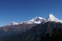 Annapurna South 7219m (Poxxel) Tags: nepal annapurna annapurnasouth annapurnahimal