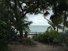 Key West Garden Club at West Martello Tower - Beach View (escriteur) Tags: beach florida fort kitesurfing keywest kitesurfer higgsbeach img1992 westmartellotower joeallengardencenter westmartello keywestgardenclub fortwestmartello westmartellofort