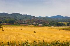 _MG_7586 (Lost-Travelers) Tags: emporda baix girona catalunya paisatge paisaje