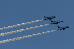 DSC_9106.jpg (kenichi0213) Tags: jasdf 航空自衛隊 自衛隊 航空祭 入間 入間基地 入間航空祭 iruma japan saitama 埼玉 nikon nikkor ブルーインパルス blueimpulse airshow
