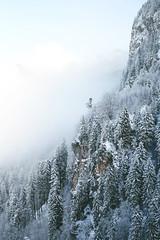 Hills of Neuschwanstein (kara o'keefe) Tags: trees tree wald forest snow winter cliff germany deutschland suedeutschland allgaeu schwangau neuschwanstein fuessen outdoors hike