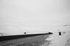 .[a] beautiful wilderness. (Shirren Lim) Tags: mongolia blackandwhite monochrome dog wilderness winter landscape road roadtrip vast animal clouds sky grey desolate