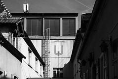 Rheingönheim (Manfred Hofmann) Tags: analog brd dörferindervorderpfalz kurpfalz orte projekte flickr öffentlich ludwigshafen pfalz