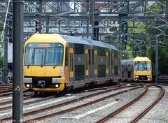 Sydney Trains - Waratahs A53 and A67 return from the City Circle (john cowper) Tags: waratahset a67 a53 centralrailwaystation sydneytrains suburbanrailways sydney newsouthwales