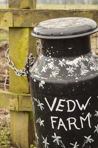Vedw Farm