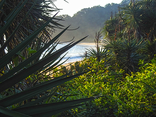 Praia bacia da Vovó  -  Penha -SC