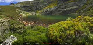 La laguna del Malicioso en el circo glaciar del mismo nombre, en la sierra leonesa de La Cabrera, situado a  1.858 m. /The Lagoon of the Malicious in the glacier circus of the same name, in the Sierra Leonese of La Cabrera, located at 1,858 m./