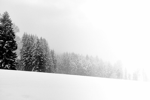 into the white...