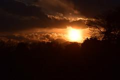 20170308_014_2 (まさちゃん) Tags: 雲 空 富士山 シルエット silhouette