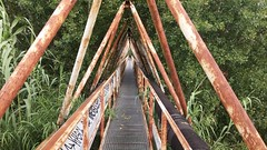A bridge in Pesaro. (dskatko) Tags: bridge tree green grass graffiti rust alone rusty pole pesaro