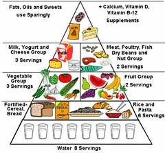Food Pyramid Chart For Stay Fit (Prashanth Fertility Hospital) Tags: hospital fertility ivf iui icsi eggdonor surrogacy chennai