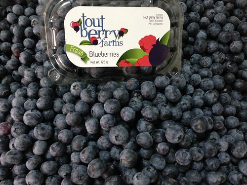 Tout Berry Farms Blueberry Package with Loose Fruits d May 20, 2015