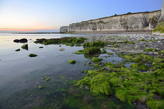 UPON A VELVET SHORELINE  -  (Selected by GETTY IMAGES) (DESPITE STRAIGHT LINES) Tags: morning sea england sunlight seaweed beach nature water beauty rock digital sunrise bay coast kent seaside sand aperture nikon rocks flickr surf day alone dof tide tripod shoreline iso coastal shore soul coastline naturalbeauty botanybay tidal mothernature magichour taming goldenhour gettyimages manfrotto d800 heathen broadstairs themagichour thegoldenhour paulwilliams lowlightphotography outdoorphotography sunrisephotography botanybaykent nikkor1424mm nikon1424mm nikond800 nikongp1 botanybaybroadstairs yahooprojectweather despitestraightlines sunriseoverbotanybay botanybayinbroadstairs