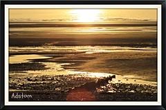 Cleavleys West Coast  nr Blackpool (adstom) Tags: sunset sea shells beach canon sand pebbles westcoast blackpool cleavleys